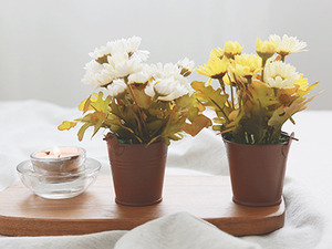 가을소국 브라운 바스켓[2size] [2color]