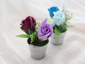 달콤한 봄 비누장미 화분[6color]